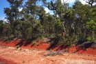 Red Hot Earth of Northern Queensland