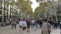 Las Ramblas, Barcelona.  This is the main tourist thoroughfare.