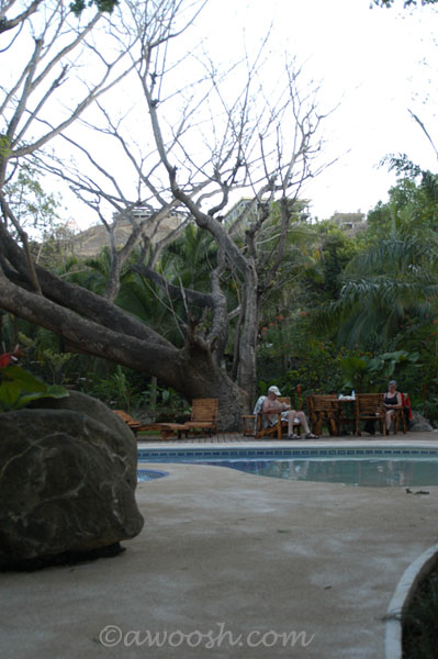 Playa Hermosa Hotel Pool - Leaves are dropped from some trees during dry season.