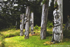 Highlight for Album: Haida Gwaii/Queen Charlotte Islands Motorcycle Journey - July 2008