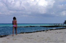 Highlight for Album: Maria La Gorda, Cuba - Topside - December 2004