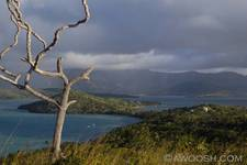 Highlight for Album: Nananu-i-ra Island, Fiji - June 2007